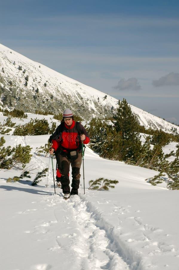 Ludzie wycieczkuje w pięknych zim górach obrazy stock
