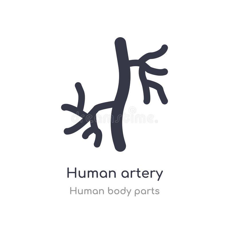 ludzka arteria konturu ikona odosobniona kreskowa wektorowa ilustracja od cia?o ludzkie cz??ci inkasowych editable cienieje uderz ilustracji