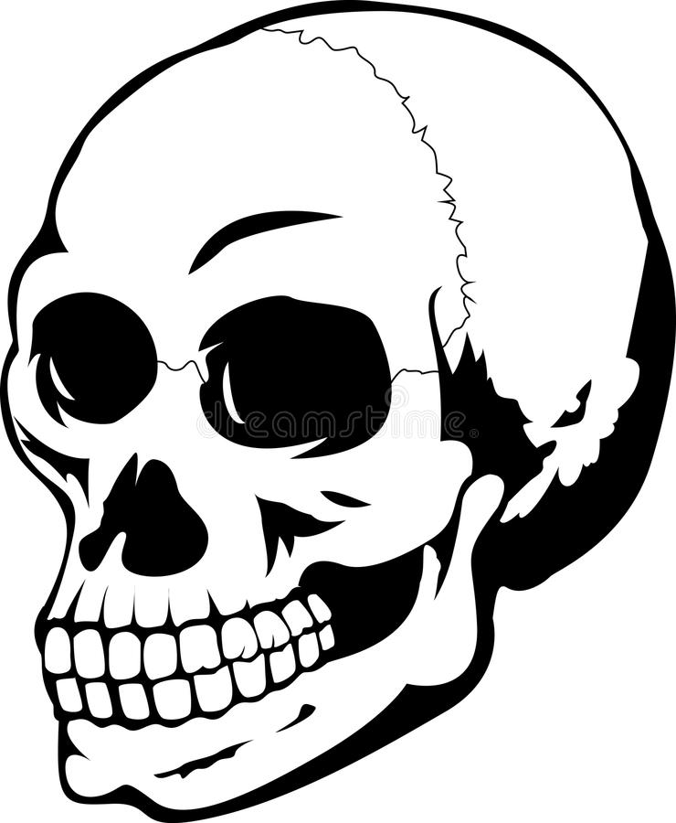 Ludzka czaszka ilustracji