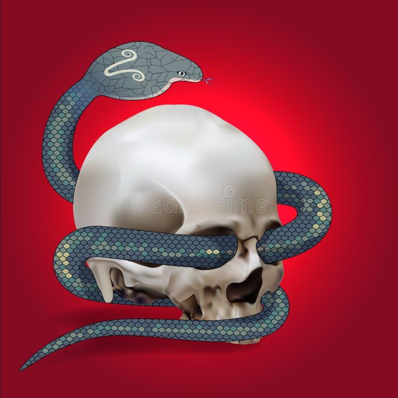 Ludzka czaszka opleciona wężem ilustracja wektor