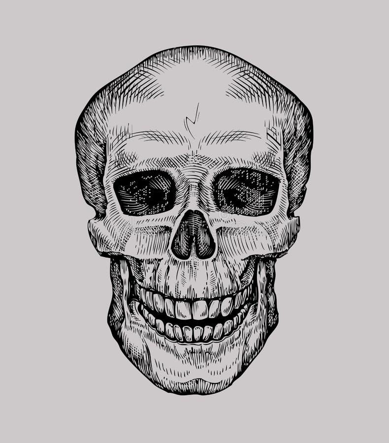 ludzka czaszka Ręka rysujący Byczy Roger Nakreślenie śmierć lub żywego trupu wektoru ilustracja ilustracji