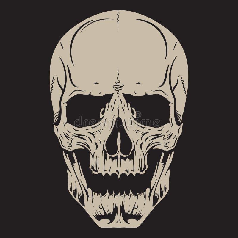 Ludzka czaszka, rysująca ręką royalty ilustracja