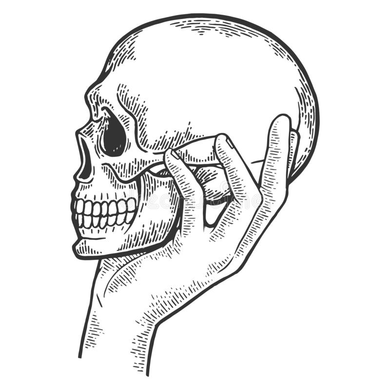Ludzka czaszka w ręki nakreślenia rytownictwa wektorze ilustracja wektor