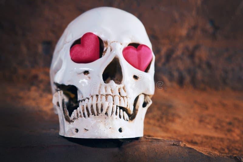Ludzka czaszka z czerwonym sercem Pojęcie dla walentynki ` s dnia zdjęcia royalty free