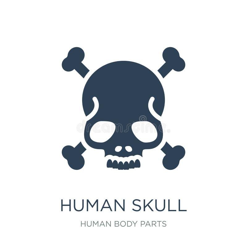 ludzka czaszka z krzyżującą kości ikoną w modnym projekta stylu ludzka czaszka z krzyżującą kości ikoną odizolowywającą na białym ilustracja wektor