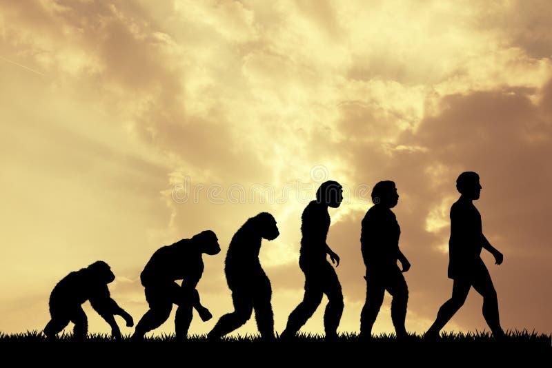 Ludzka ewolucja ilustracji