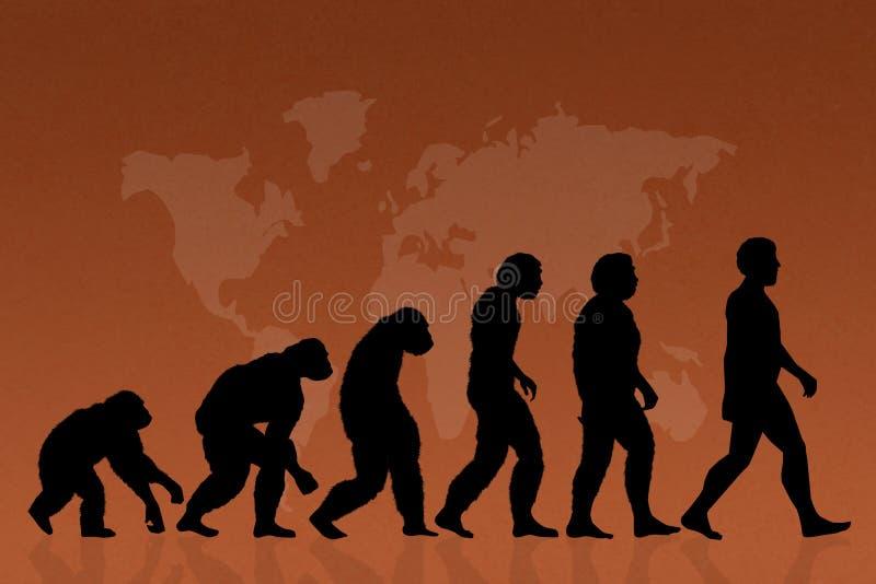 Ludzka ewolucja, gatunki royalty ilustracja