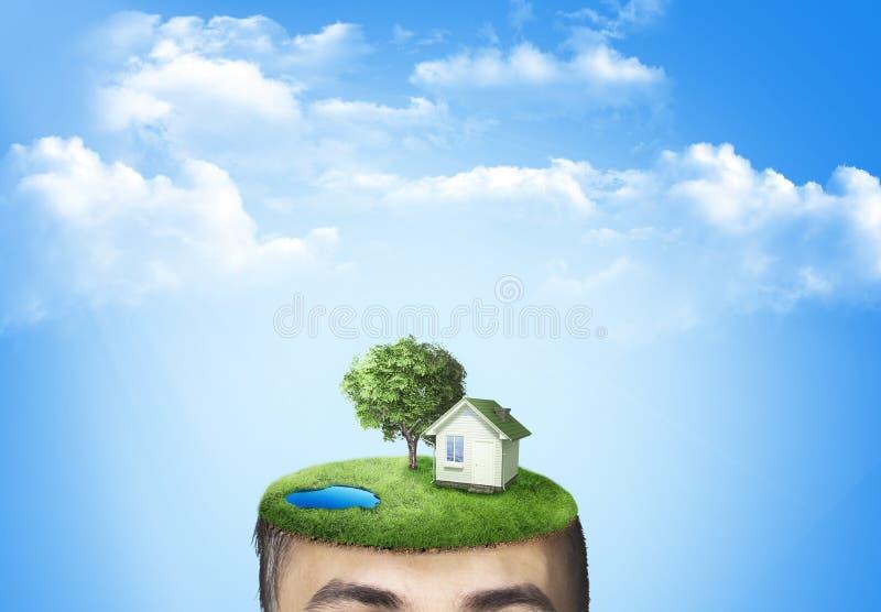 Ludzka głowa z trawą i domem obrazy stock