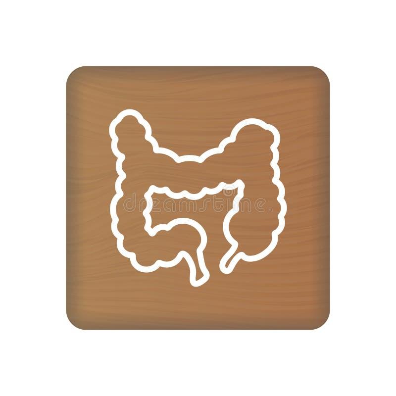 Ludzka Kiszkowa ikona Wewnętrznego organu wektor Ludzka anatomii ilustracja Szyldowy symbol Dla Medycznej prezentacji Dalej ilustracji