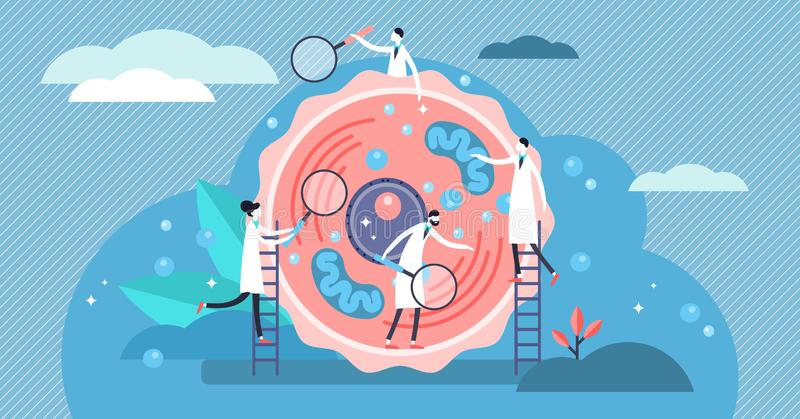 Ludzka komórka wektoru ilustracja Malutki stylizowany mikrobiologii persons pojęcie ilustracja wektor