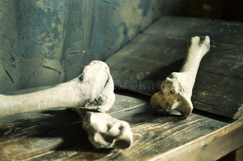 Ludzka krew kłama na drewnianym łóżku w kamerze zdjęcia stock
