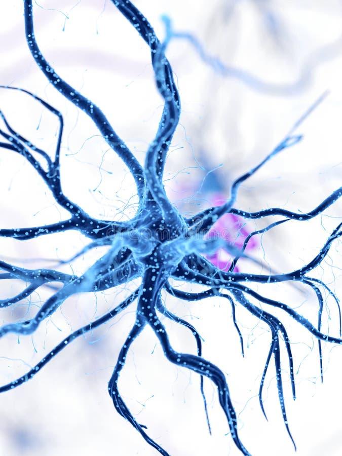 Ludzka nerw komórka royalty ilustracja