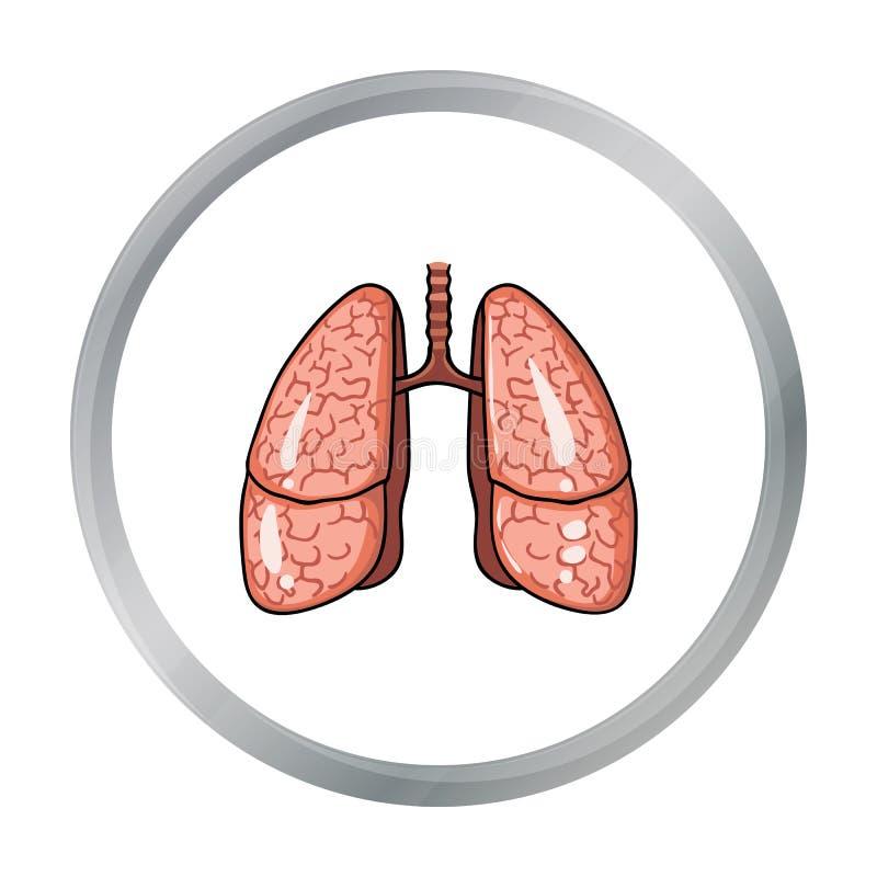Ludzka płuco ikona w kreskówka stylu odizolowywającym na białym tle Ludzkich organów symbolu zapasu wektoru ilustracja ilustracji