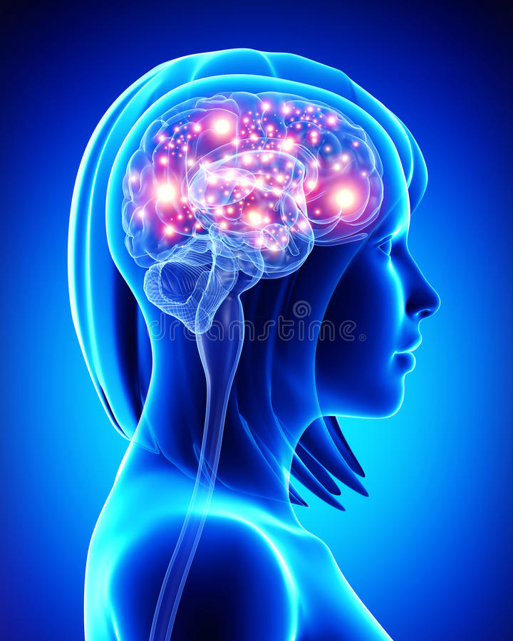 Ludzki aktywny mózg ilustracji