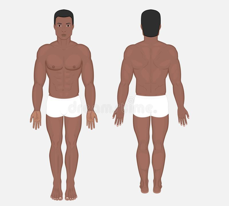 Ludzki anatomy_African indianin i Azjatycki mężczyzna ciało ilustracji