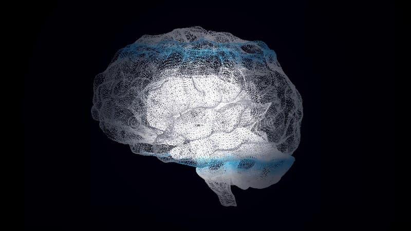 Ludzki biały mózg na czerni, nauki anatomii tło Ludzki mózg jest jak hologram plexus Biała płodozmienna istota ludzka royalty ilustracja