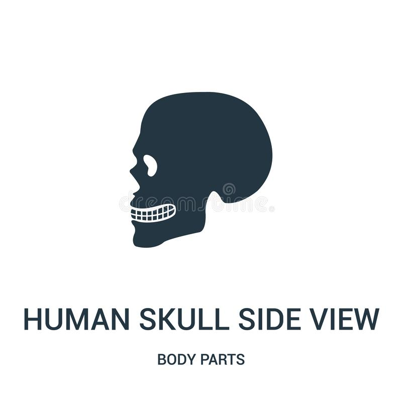 ludzki czaszka bocznego widoku sylwetki ikony wektor od części ciałych inkasowych Cienka kreskowa ludzka czaszka bocznego widoku  ilustracja wektor