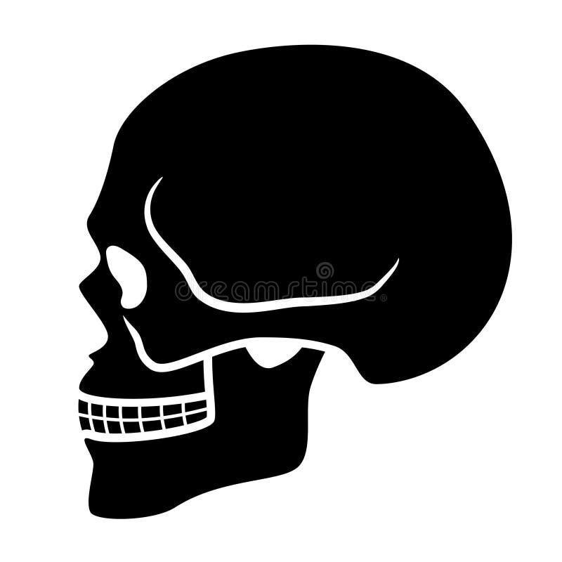 Ludzki czaszka symbol - boczny widok royalty ilustracja