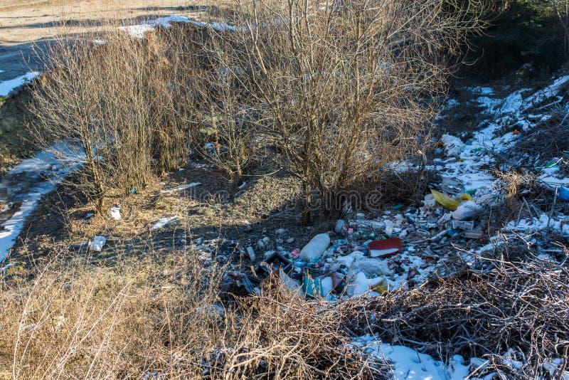 Ludzki gospodarstwo domowe odpady blisko krystalicznego czyści zamarzniętą zatoczkę przy wintertime obraz royalty free