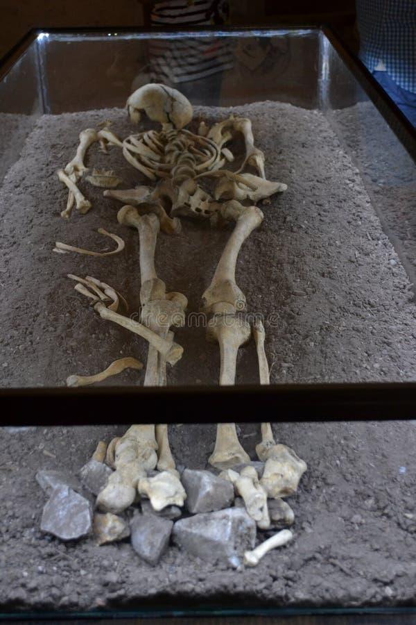 Ludzki kości Dracula Tepes Vlad dom obraz royalty free