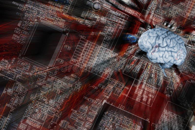 Ludzki mózg i komunikacja, inteligencja zdjęcie stock
