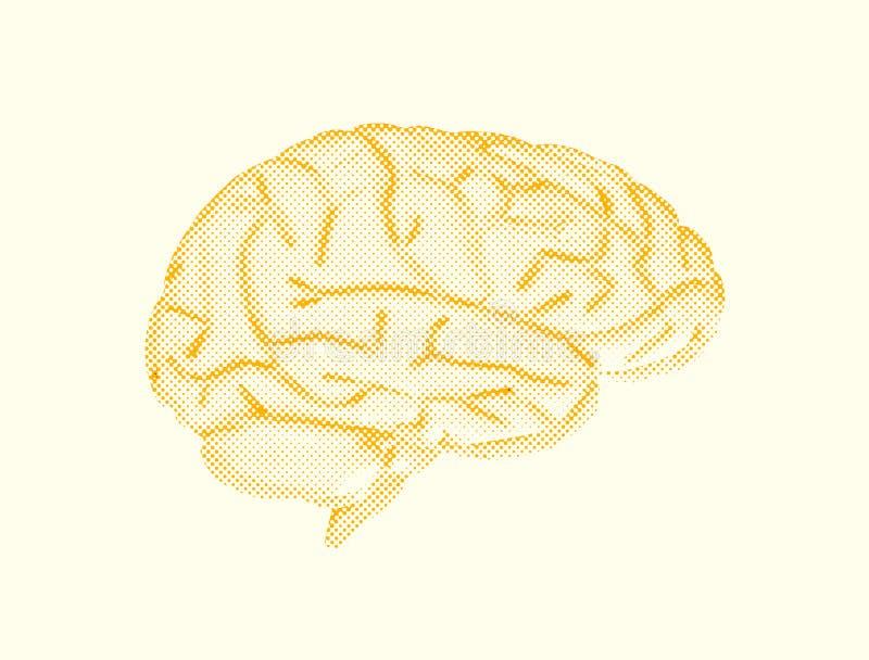 Ludzki mózg kropkowana abstrakcjonistyczna ilustracja royalty ilustracja