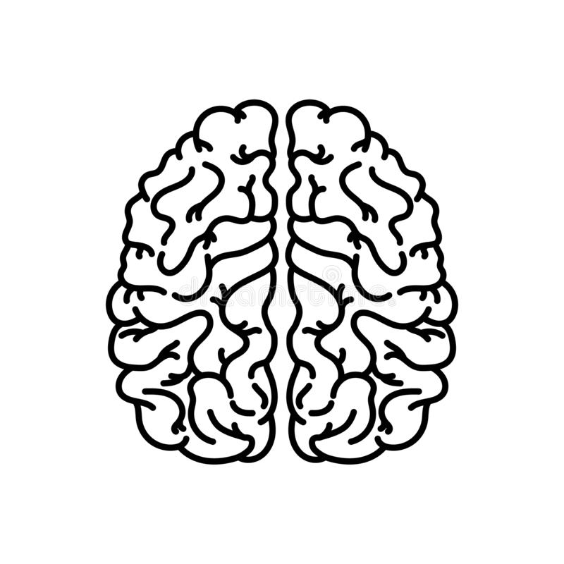 Ludzki mózg liniowa ikona Cienka kreskowa ilustracja Uk?adu nerwowego organ Konturowy symbol Wektoru konturu odosobniony rysunek ilustracji