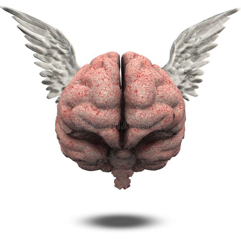 Ludzki Mózg z skrzydłami royalty ilustracja