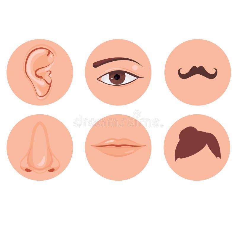 Ludzki nos, ucho, usta wąsy włosy i oko set, ilustracji
