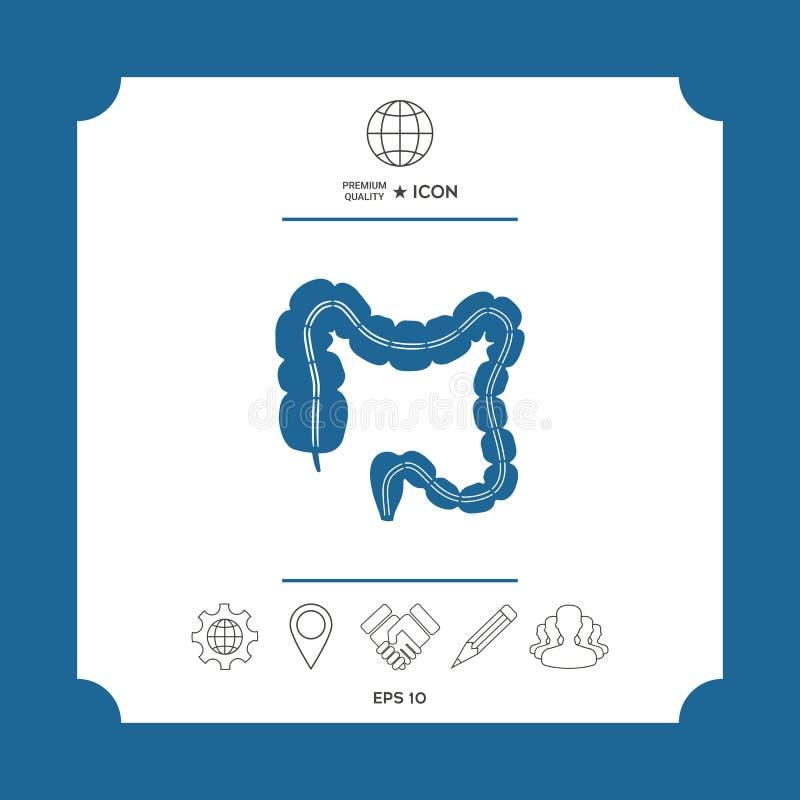 Ludzki organ - wielki jelito ilustracja wektor