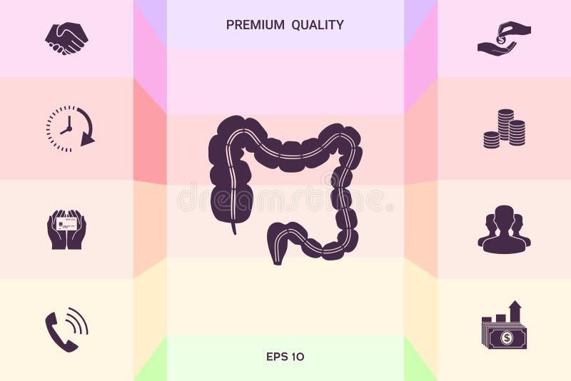 Ludzki organ - wielki jelito Graficzni elementy dla twój projekta royalty ilustracja