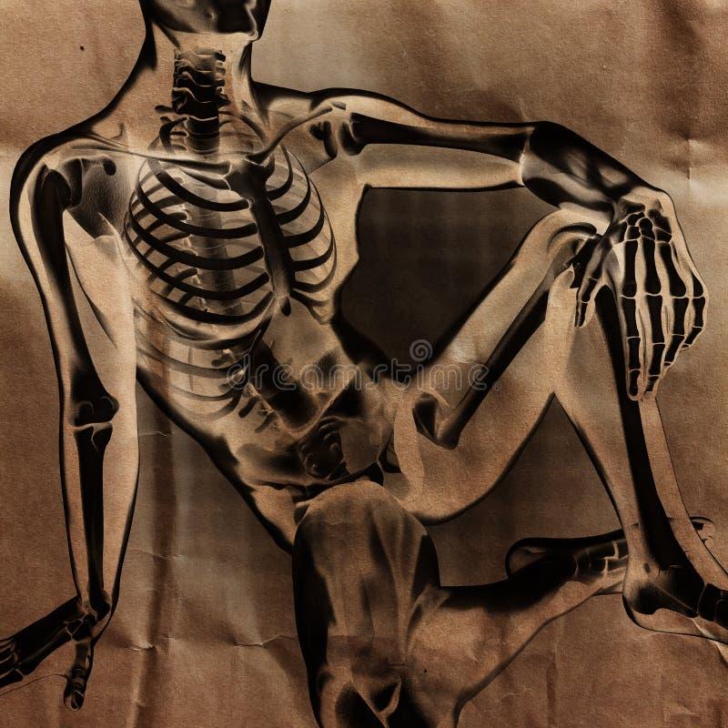 Ludzki prześwietlenie obraz cyfrowy z kościami malować fotografia stock