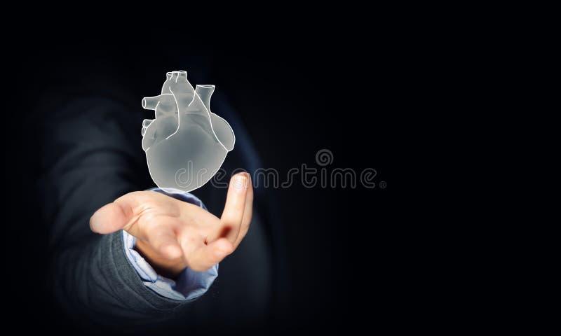 Ludzki serce fotografia stock