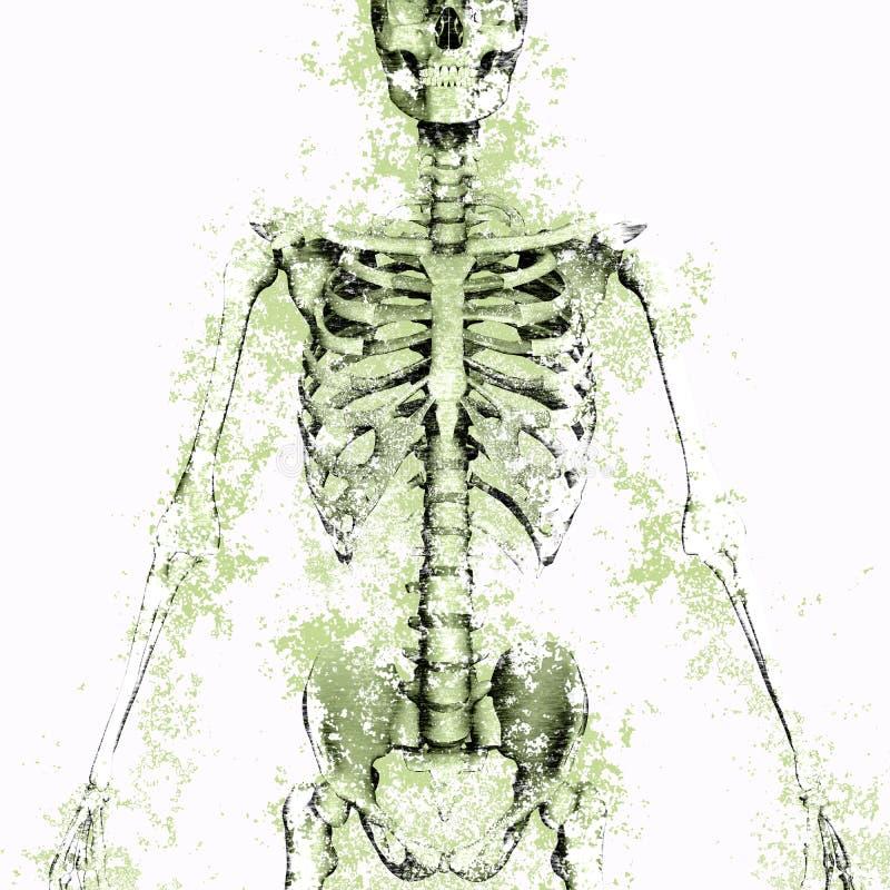 Ludzki zredukowany rysunek z grungy teksturą ilustracja wektor