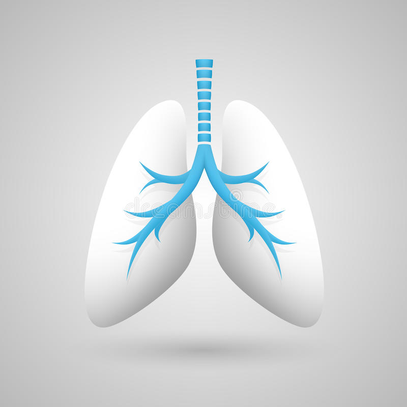 Ludzkich płuc medyczna sztuka kreatywnie ilustracja wektor