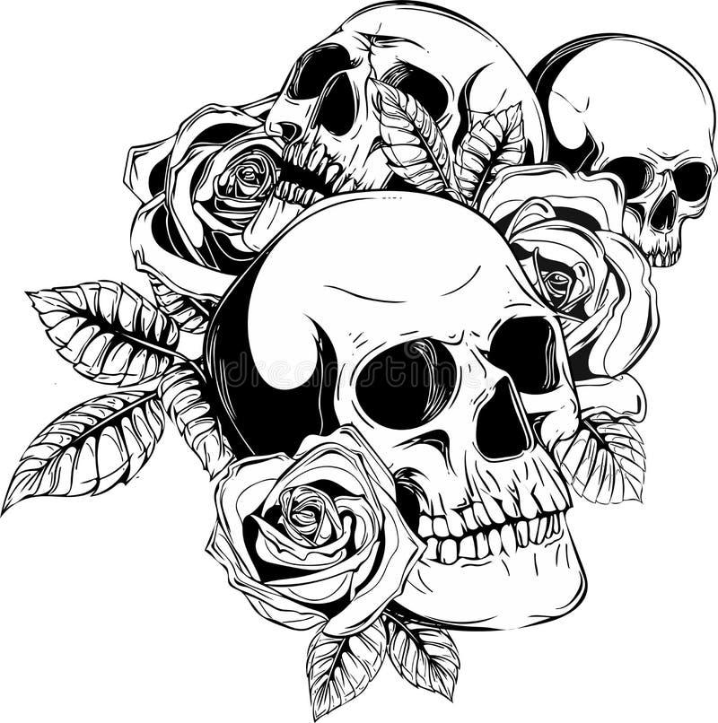 Ludzkie czaszki z różami na białym tle ilustracja wektor