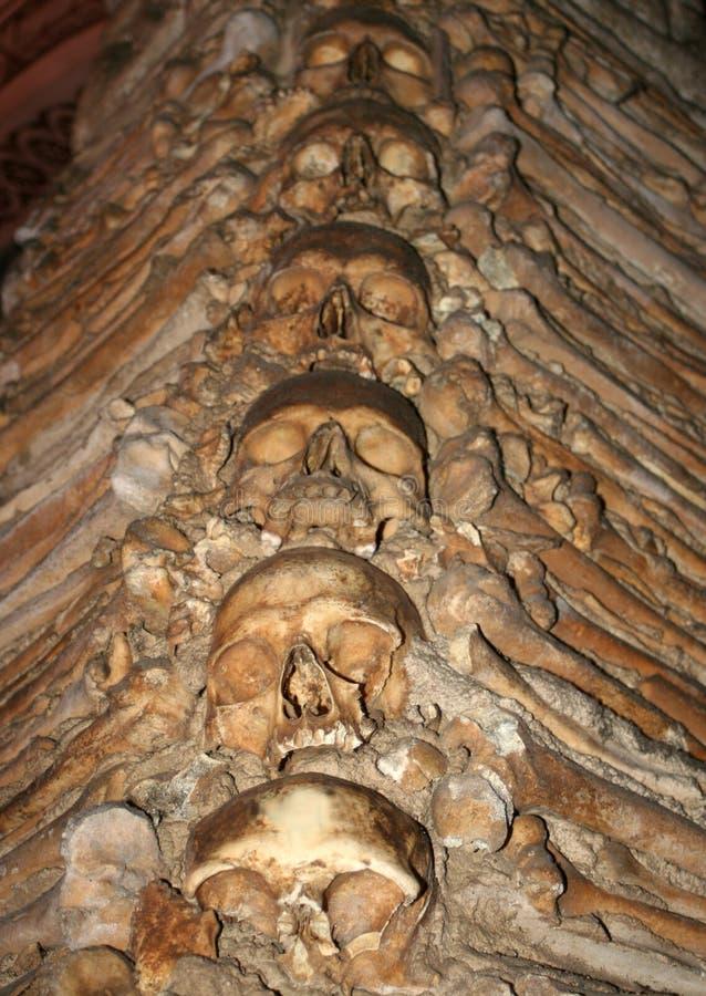 Ludzkie Kości. Zdjęcia Royalty Free