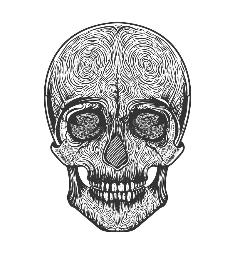 Ludzkiej czaszki plemienny styl Tatuażu blackwork Wektorowa ręka rysująca ilustracja Boho royalty ilustracja