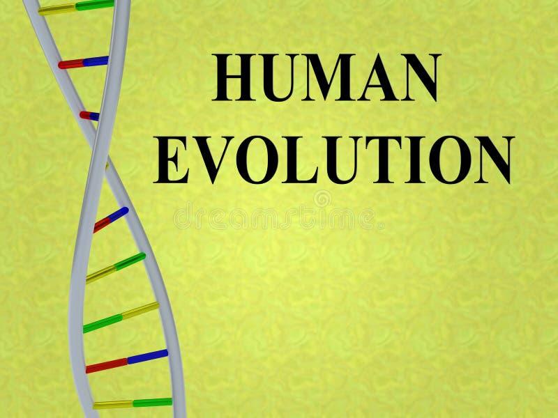 LUDZKIEJ ewoluci pojęcie royalty ilustracja