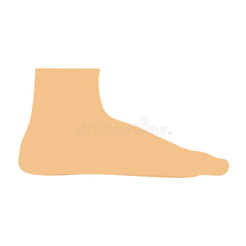 Ludzkiej stopy osoby ikony wektorowa ilustracja Noga kroka odcisku sylwetki ciała projekt odizolowywający Wyłączny anatomia znaka ilustracja wektor