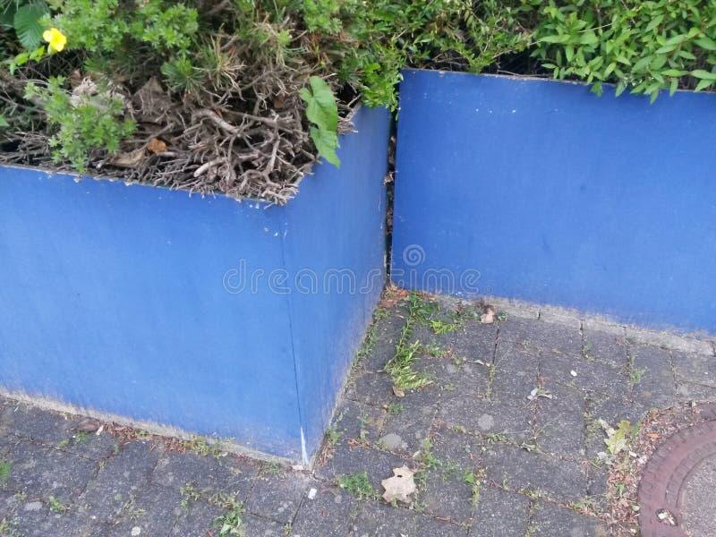 Lue gloeer pot in blauwe kleur stock foto's