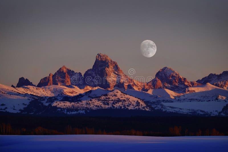 Lueur d'Alpen de lumière de coucher du soleil sur des montagnes de Tetons Teton avec RISI de lune photographie stock