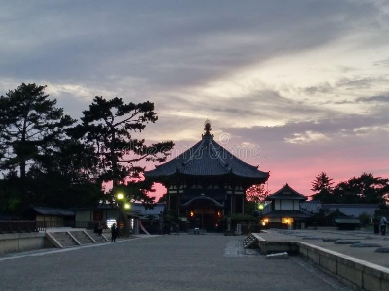 Lueur de coucher du soleil de temple de Todaiji, Japon photos libres de droits