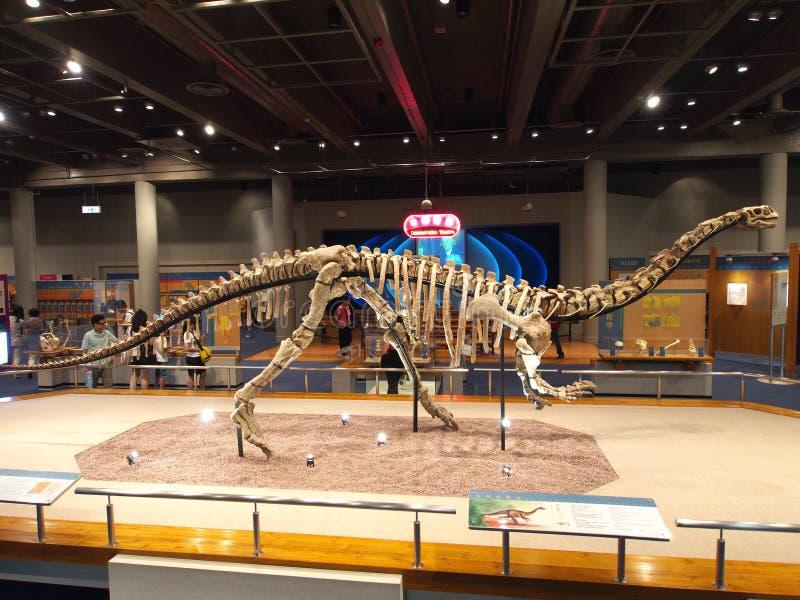 Lufengosaurus Magnus in het Museum van de Wetenschap van Hongkong royalty-vrije stock foto