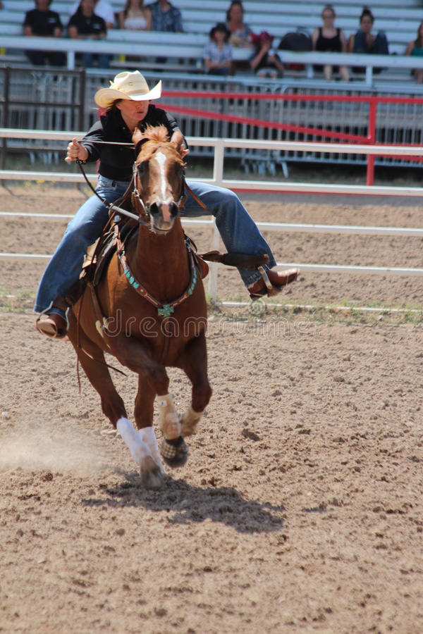 Lufowy Ścigać się - Cheyenne dni Nadgraniczny rodeo 2013 zdjęcie royalty free