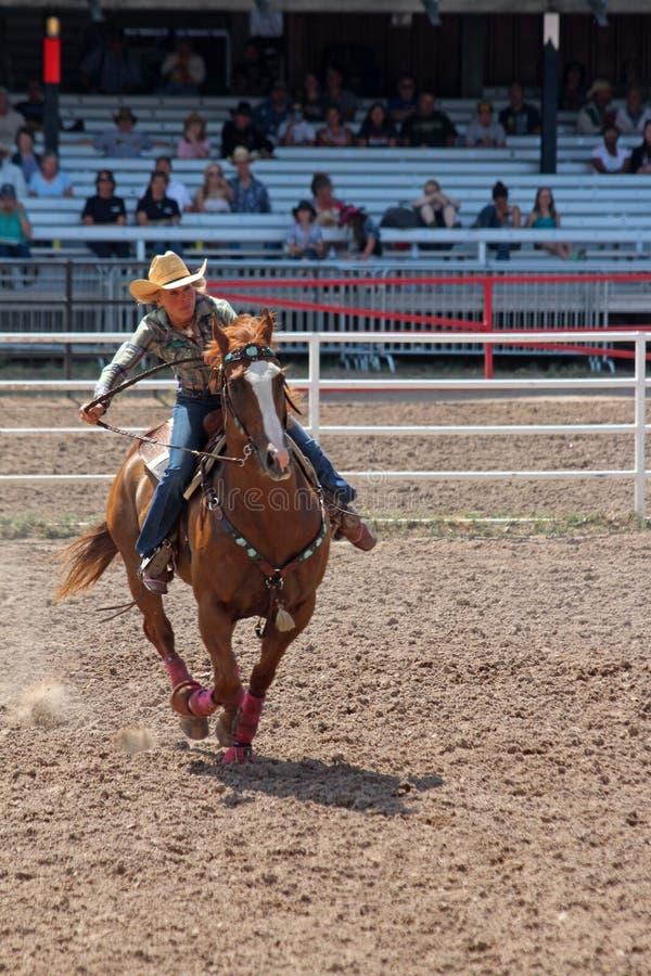 Lufowy Ścigać się - Cheyenne dni Nadgraniczny rodeo 2013 obraz royalty free