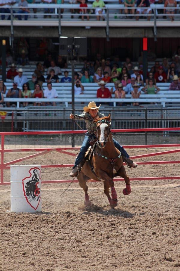 Lufowy Ścigać się - Cheyenne dni Nadgraniczny rodeo 2013 obraz stock