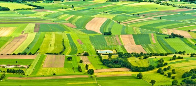 Luftaufnahme der grünen Felder stockfotos