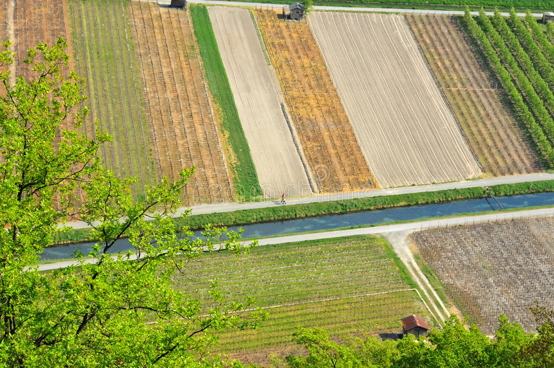 Download Luftbild Der Weinberge, Der Obstgärten Und Des Stromes Stockfoto - Bild von aerial, bauernhof: 9091818