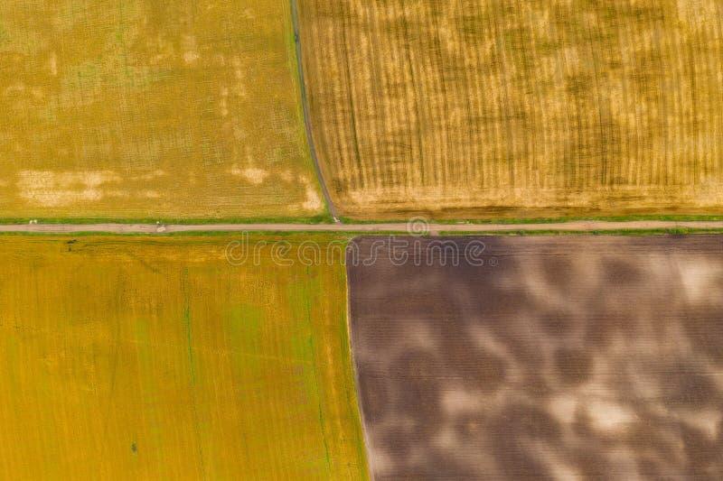 Luftbild-Drohnen-Fotografie eines Landes mit gesäten Grünflächen auf dem Lande stockbilder